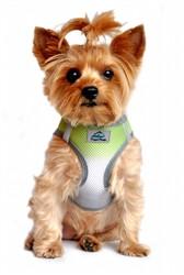 Limestone Gray Ombre American River Choke Free Dog Harness