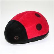 Lady Bug Dog Toy