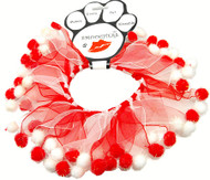 Candy Cane Christmas Party Dog Collar