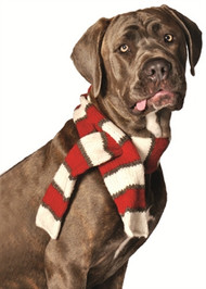 Red and White Striped Dog Scarf