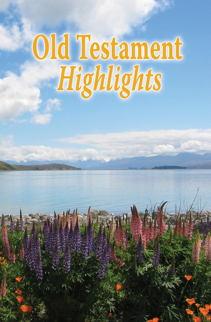 Old Testament Highlights - Adult Study Guide