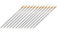 SafetyGlass Vaned Archery Arrows
