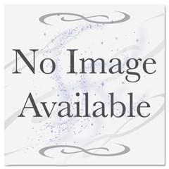 CAR 2851-B-10 by WINCUP PLASTICS INC