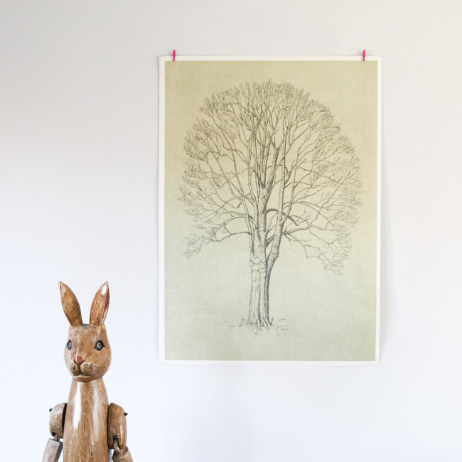 Vintage Double Sided Tree Print, Birch Tree