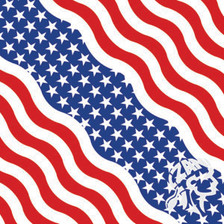 Bandanna, American Flag
