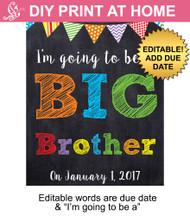Big Brother Editable Printable Poster