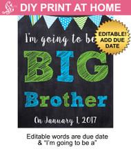 Green & Blue Big Brother Editable Printable Poster