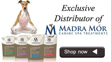madra-mor-banner-jpeg2.jpg