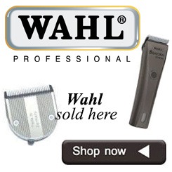 wahl-banner-jpeg.jpg