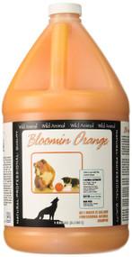 Wild Animal Blossom Orange Shampoo