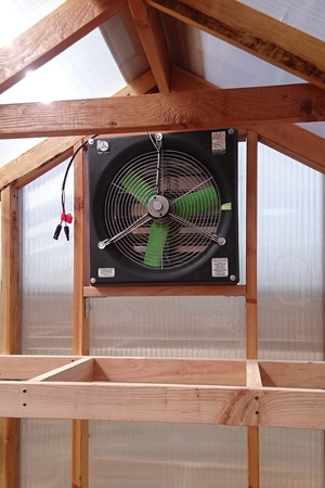 inside-fan-2.jpg