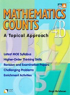 Mathematics Counts 4B, a Topical Approach, workbook