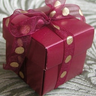 DIY Holiday Burgundy Favor Box {Set of 10}