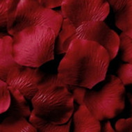 Burgundy Silk Petals {Package of 100}