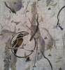 Stencils - Diane Ericson