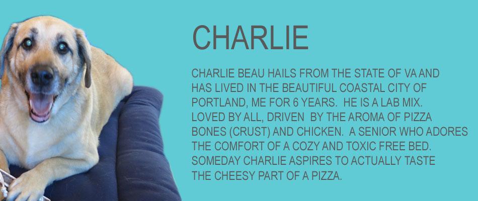 charlie-copy.jpg