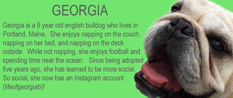 georgia-copy.jpg