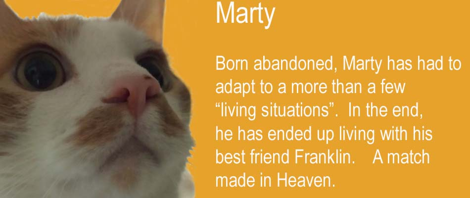 marty-copy.jpg