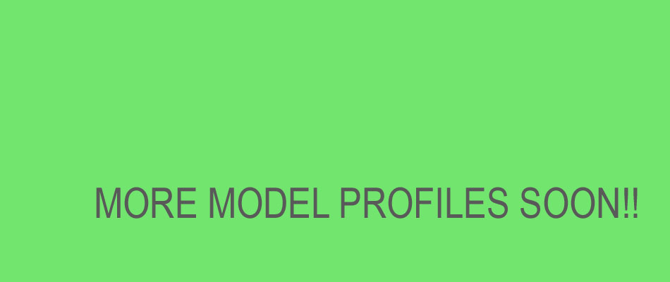 more-profiles-to-come-soon-copy.jpg