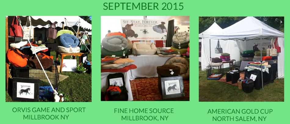 september-2015-copy.jpg