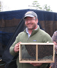 How to get bees for your top bar hive