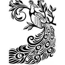 Embossing Folder PEACOCK Darice 1219-127 Use with Most Popular Embossing/Cutting Machines