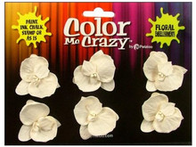 Petaloo Color Me Crazy Collection - Orchids - Medium - Dendrobiums