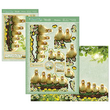 Hunkydory Spring Days & Country Life - Spring Ducklings - Deco-Large Set Card Kit