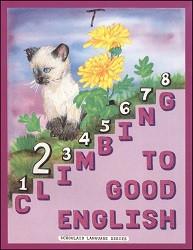 Climbing to Good English 2 Teacher