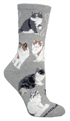 Ragamuffin Cat Socks