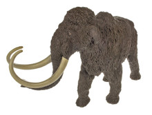 Carnegie Museum of Natural History Woolly Mammoth