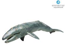 Monterey Bay Aquarium® Sea Life Gray Whale Adult