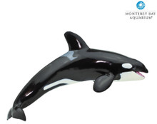 Monterey Bay Aquarium® Sea Life Killer Whale