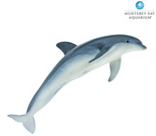 Monterey Bay Aquarium® Sea Life Bottlenose Dolphin