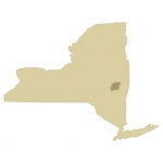 Albany County Antique Maps Icon