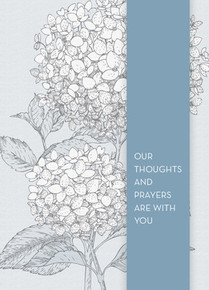 Gardenia Sympathy Greeting Card *