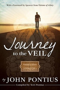 Journey to the Veil - Paperback *