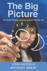 The Big Picture 20 Family-Friendly Lessons on God's Plan for You  (Paperback) *