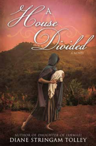 A House Divided  (Paperback)  *