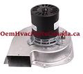 Goodman Furnace 7021-9398 Draft Inducer Motor A286