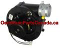 12W47 - Armstrong/Lennox Furnace Inducer Motor Genuine