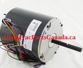 Lennox 38W83 - 100483-19 MOTOR-FAN 1/15HP 208-230/60/1 Canada