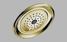"""Delta Traditional RP48686-PB 7.5"""" Touch-Clean Rain Can Showerhead - Polished Brass"""