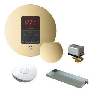 Mr. Steam MSBUTLER1 RD-PB Butler Package with iTempo Pro Round Programmable Control for Steam Bath Generator - Polished Brass