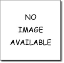 Danze DA511403BN Roman Tub Handheld Shower Hose - Brushed Nickel
