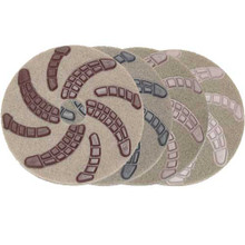 Cheetah Pads 20 inch one pad each Step 1 thru 4 case of 4 re