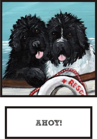 ahoy-black-landseer-newf-thumb.jpg