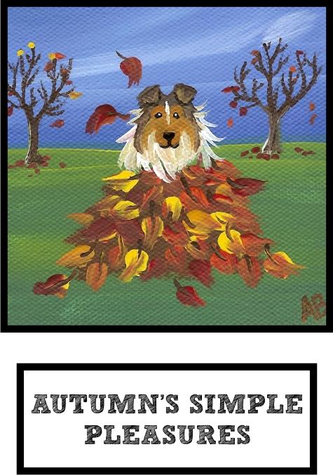 autumns-simple-pleasures-sable-sheltie-thumb.jpg