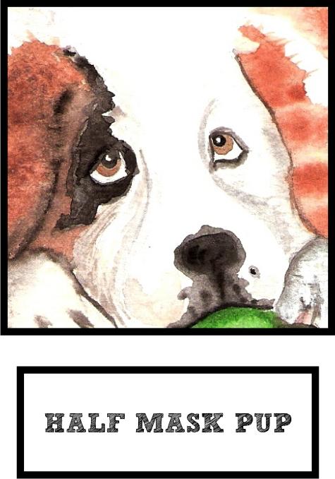 half-mask-pup-saint-bernard-thumb.jpg