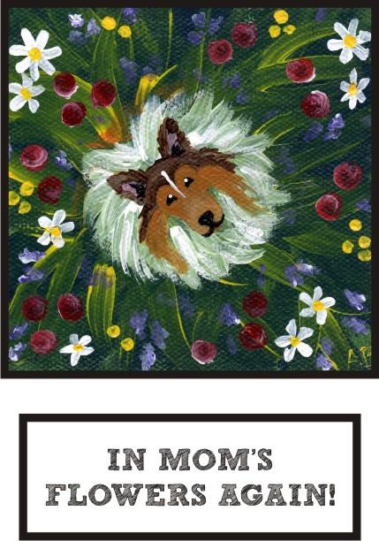 in-mom-s-flowers-again-sable-sheltie-thumb.jpg